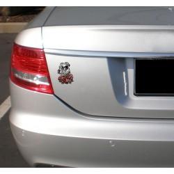Naklejka na samochód - TTB rosa