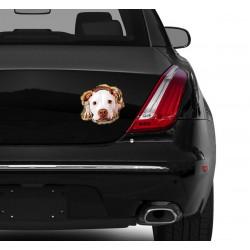 Naklejka na samochód - Pit Bull Puppy